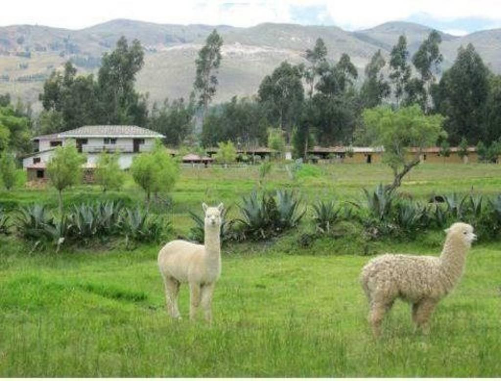 Hacienda_Yanamarca 2