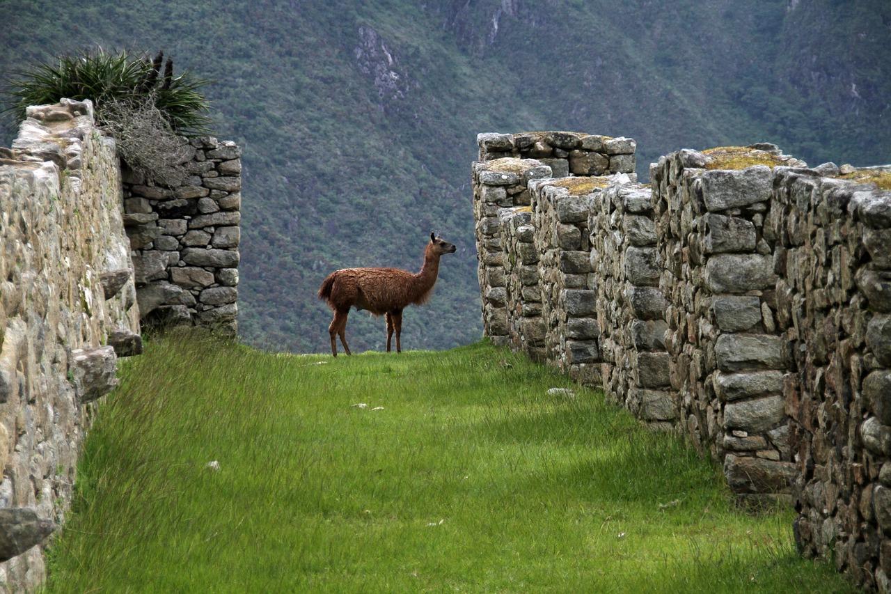 ¿Qué hacer en Cusco? Visitando Perú