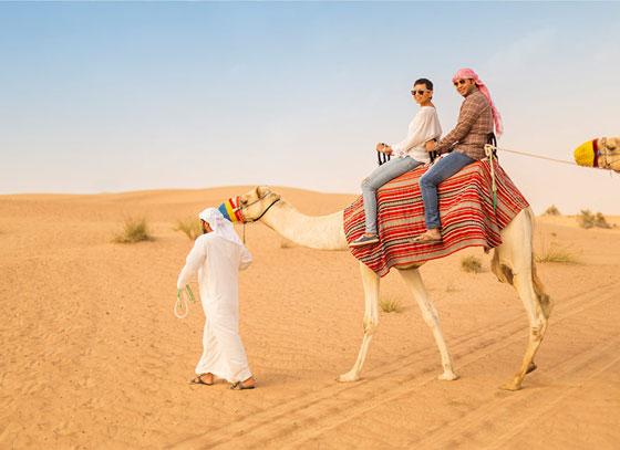Desiertos de Dubai